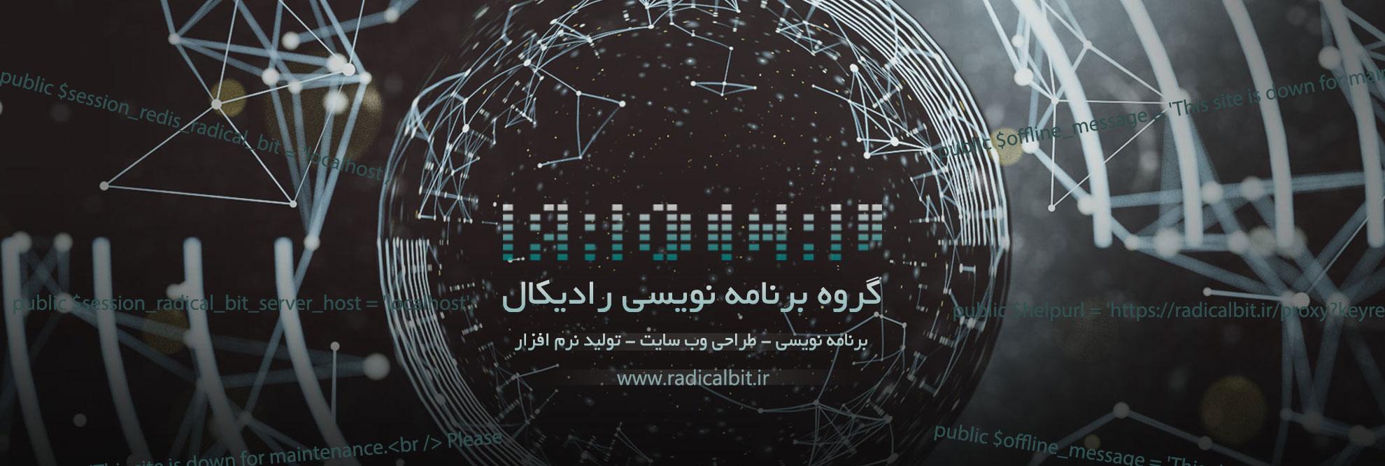 گروه برنامه نویسی رادیکال, طراحی سایت, طراحی نرم افزار